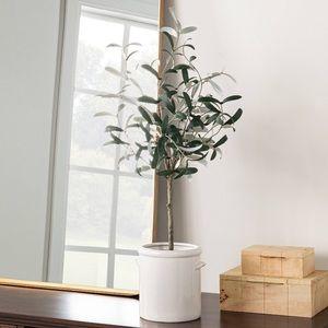 Studio McGee Artificial Olive Tree